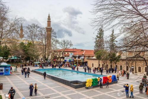 Bursa fontana